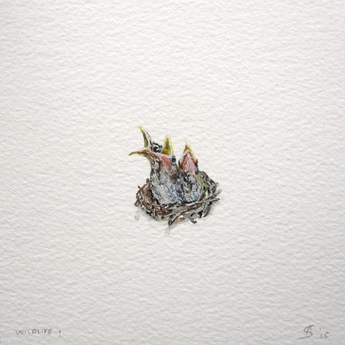 © Anita Salemink 2015. Wildlife No. 1 Watercolour 12.5 by 12.5 cm