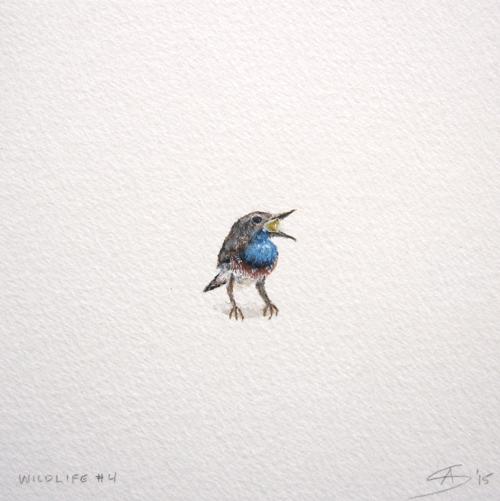 © Anita Salemink 2015. Wildlife No. 4 Watercolour 12.5 by 12.5 cm