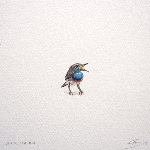 © Anita Salemink 2015. Wildlife No. 4  Watercolour 12.5 by 12.5 cm