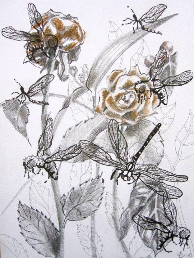 © Anita Salemink 2015.  Journal 14 september Drawing  20 x 15 cm