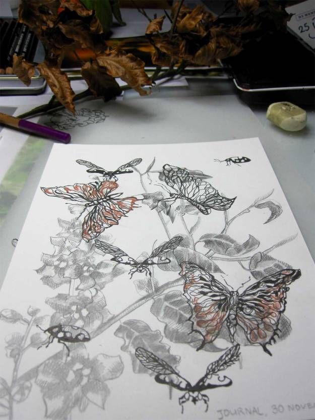© Anita Salemink 2015. Insects 3 Drawing 20 x 15 cm (work in progress)