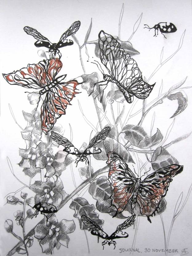 © Anita Salemink 2015. Insects 3 Drawing 20 x 15 cm